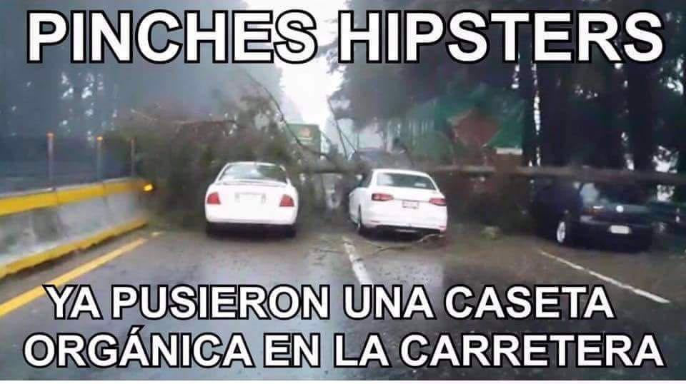 Meme Humor Frio Viento Cdmx Hispters Organico Hipsters Humor Memes