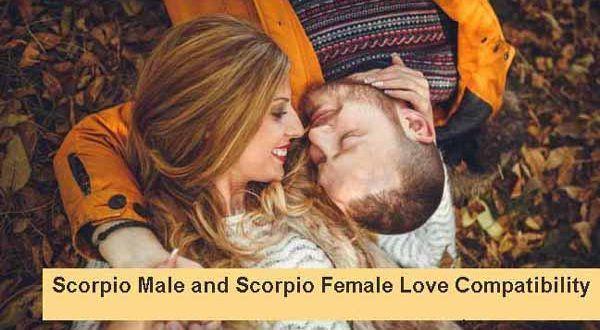 Scorpio and Scorpio - Zodiac Signs Love Compatibility rating