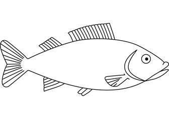 Basic Fish Design Fish Coloring Page Easy Fish Drawing Fish