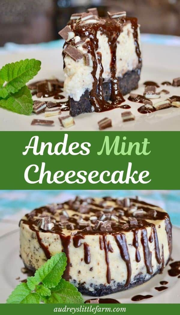 Andes Mint Cheesecake - Audrey's Little Farm