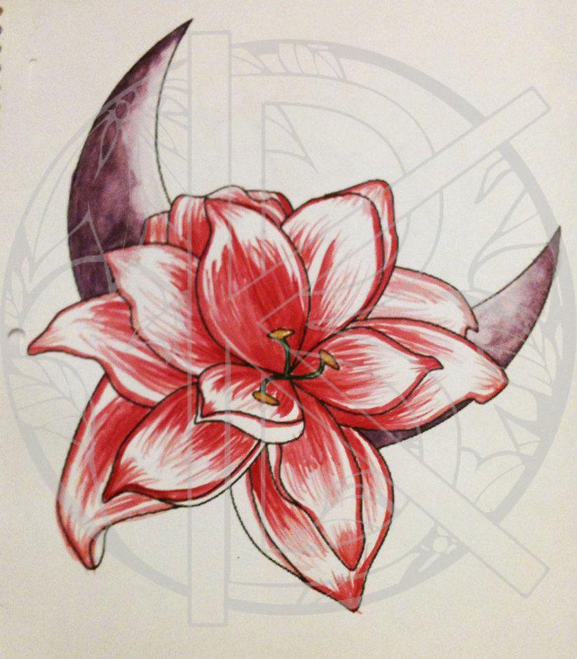 Amaryllis Tattoo Amaryllis Tattoo Amaryllis Tattoo Halloween Tattoos Flower Drawing