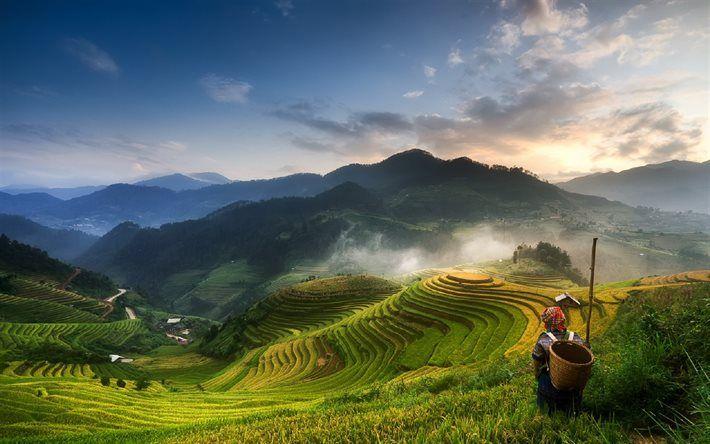 Mucangchai, sunset, plantations, rice fields, Vietnam