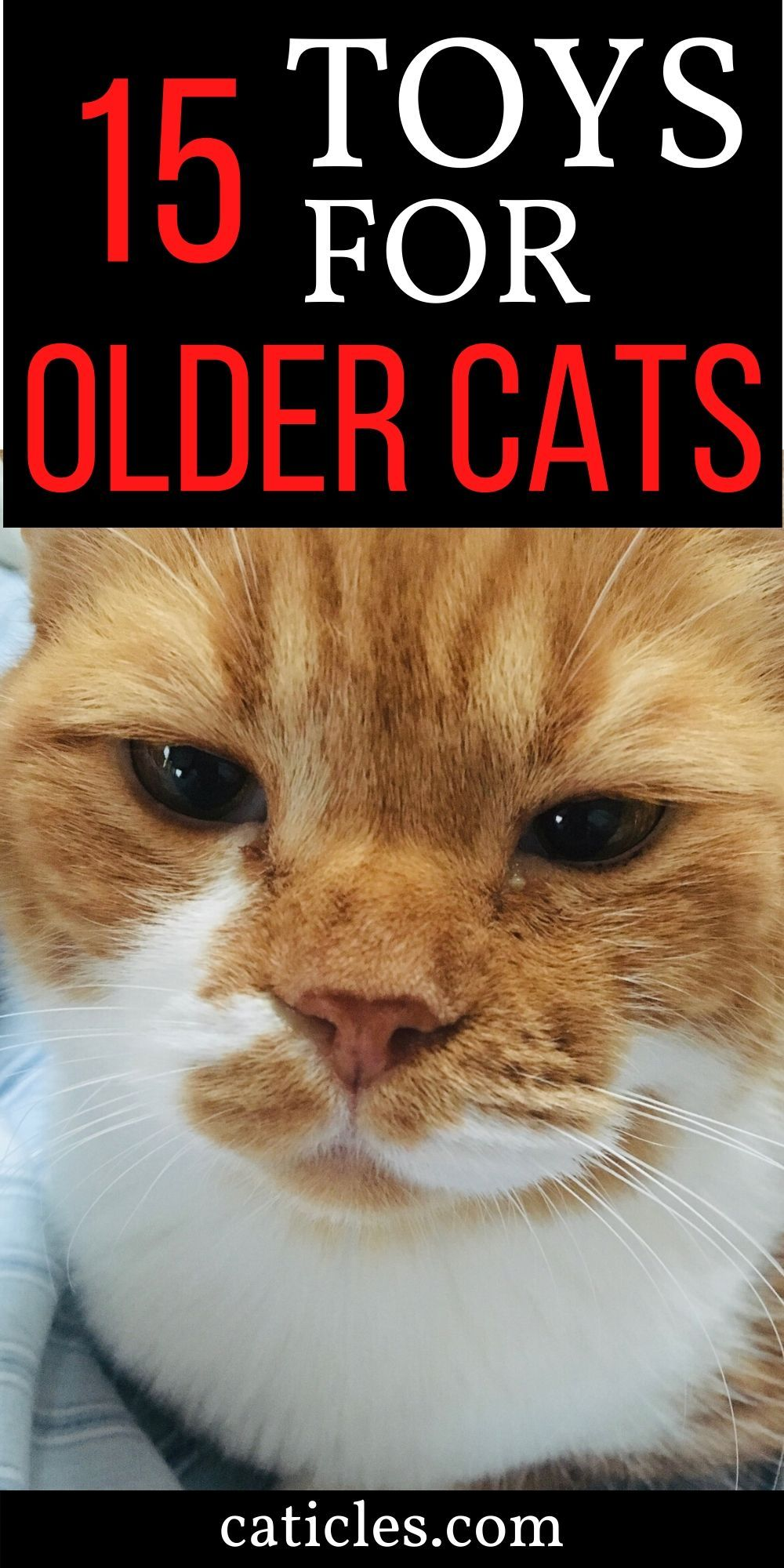 16 Gifts For Older Cats That Make Them Feel Young Again Caticles In 2020 Older Cats Senior Cat Care Best Interactive Cat Toys