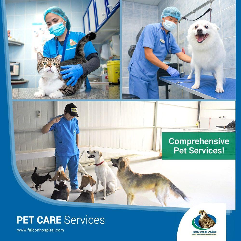 Abu Dhabi Falcon Hospital in 2020 Pet care, Abu dhabi