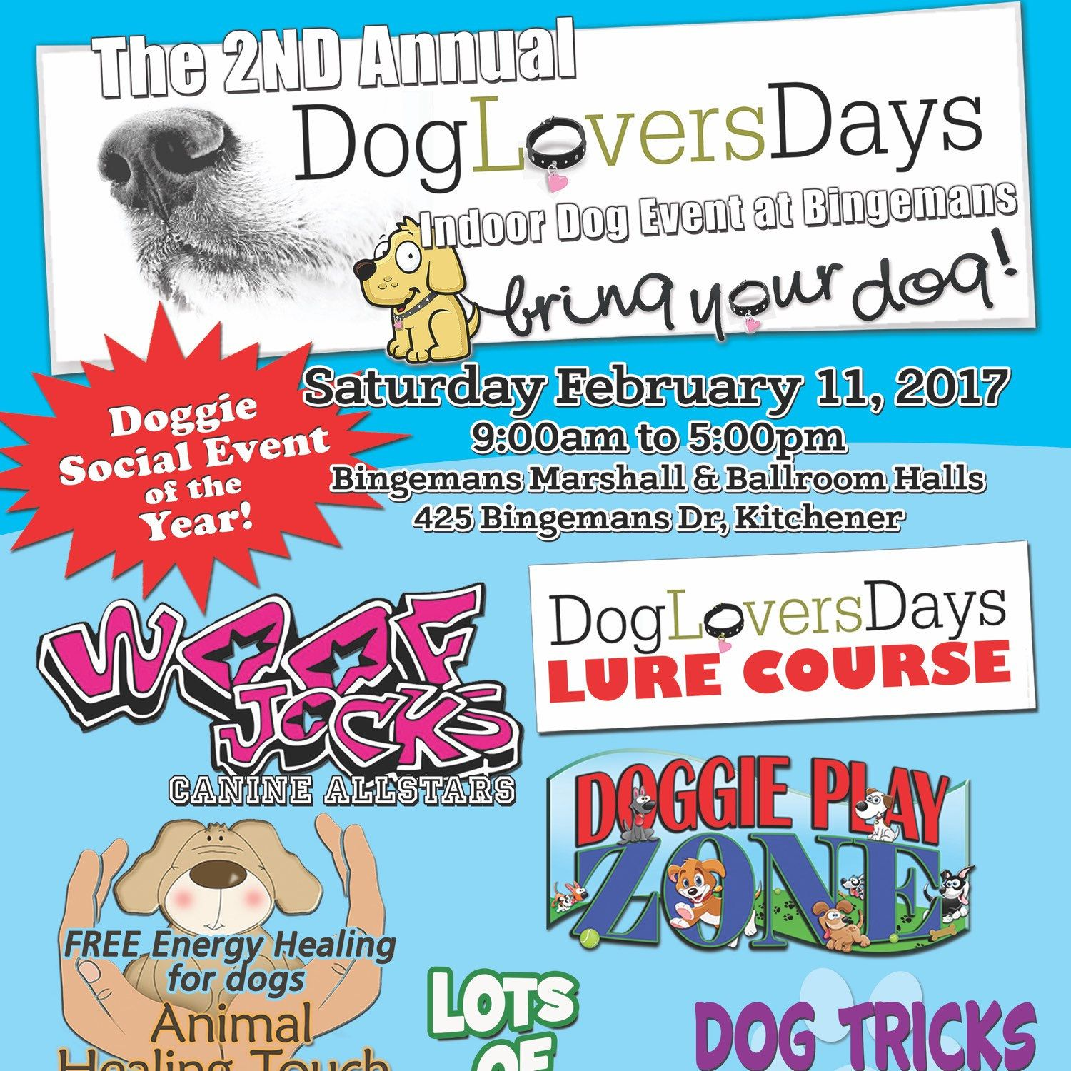 One week away! Bring your dog and come and see us! A Piper\'s Pillow ...