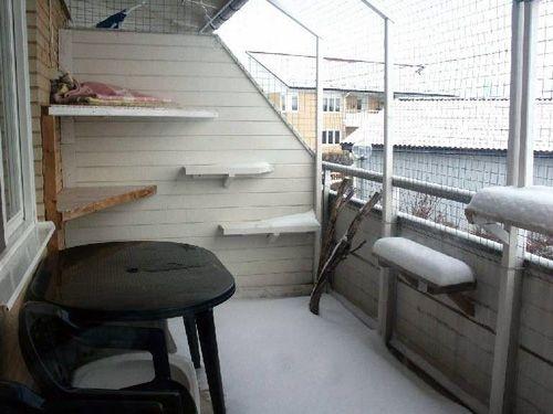 balcony for cats ideas for cat safe balcony pinterest katzen katze balkon und katzen. Black Bedroom Furniture Sets. Home Design Ideas