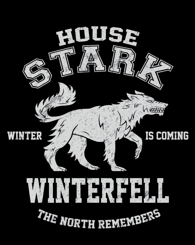 Shirt design games - Winter Is Coming T Shirt