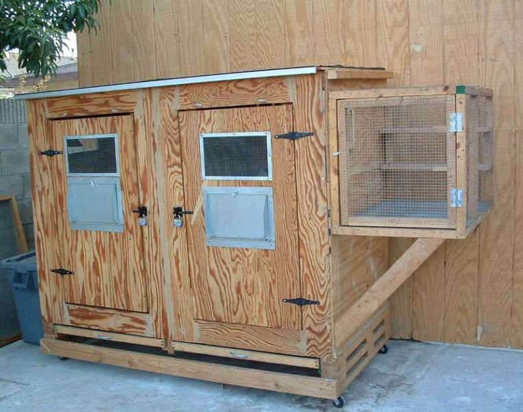 Kit Box | Pigeon loft design, Pigeon loft, Racing pigeon lofts