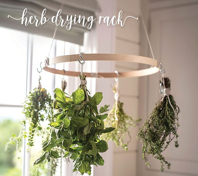 Hack Our Ceiling Light With Edison Bulbs Orb Paint And Herbs Herb Drying Racks Drying Herbs Hanging Herbs