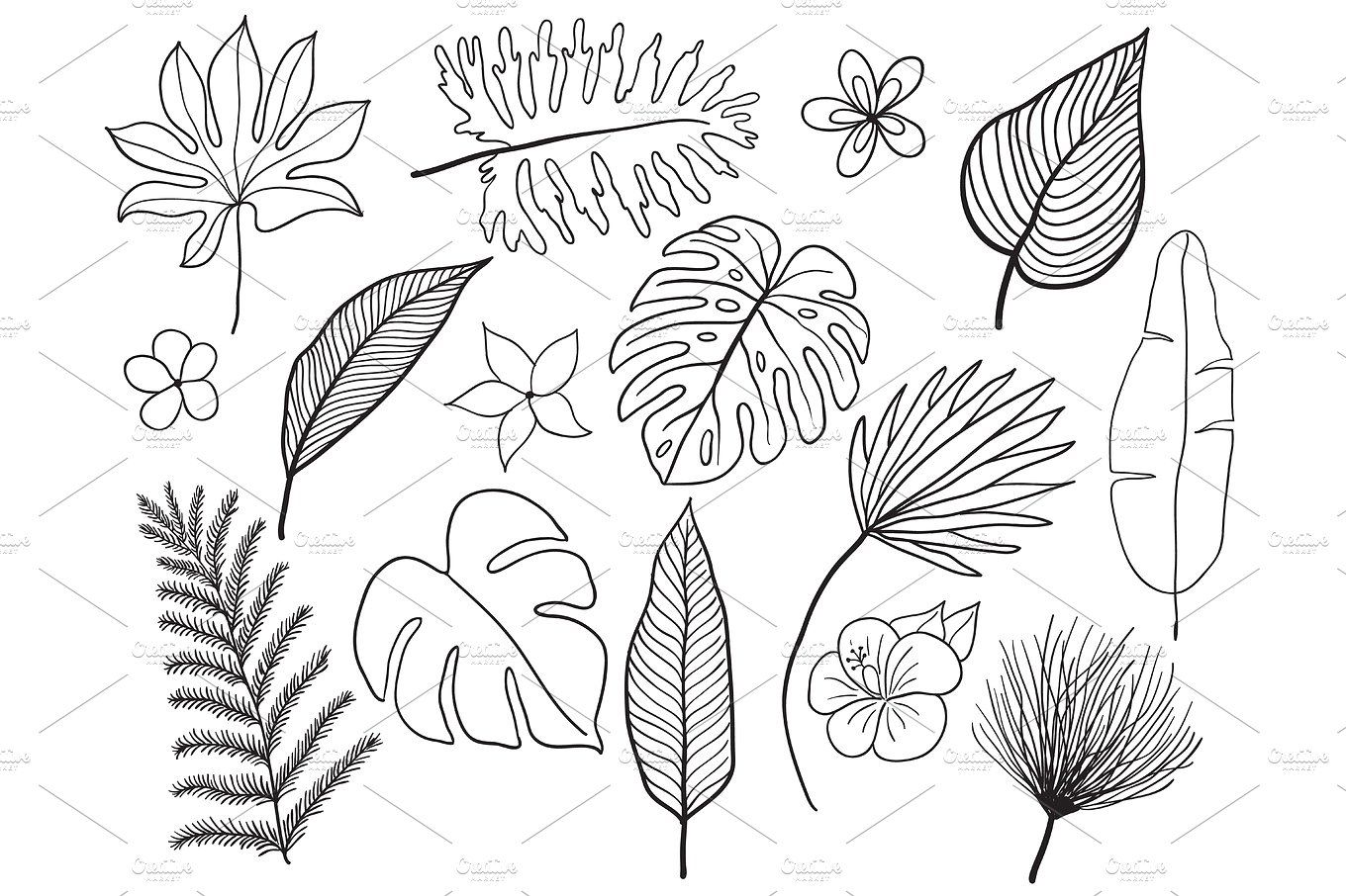 Hand Drawn Tropical Leaves Silhouette Vector Set Set Leaf