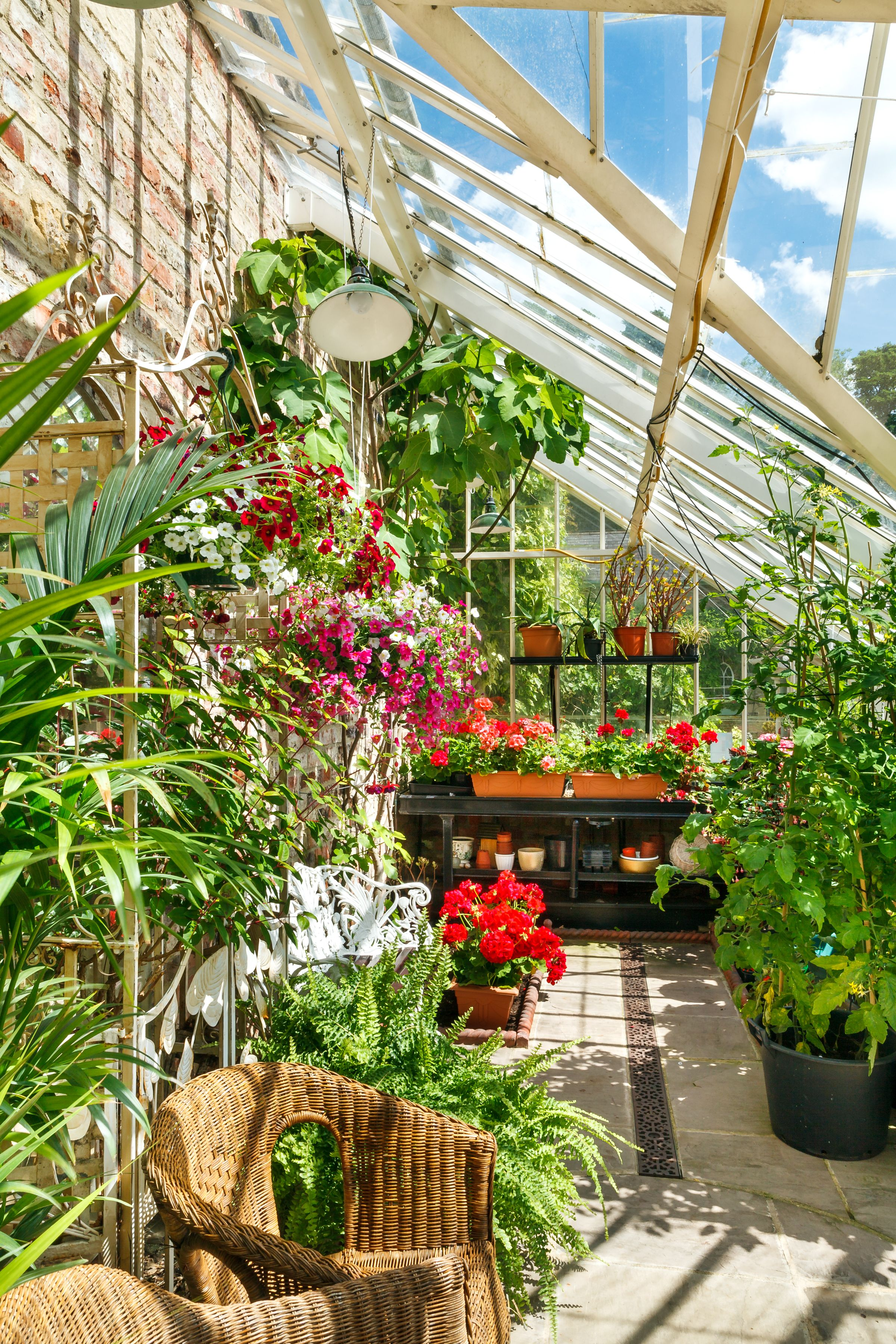 gardening shed pots man en idyllic podge free images botany wild floristry corner garden allotment greenhouse yard outdoor flower made after object photo work backyard hodge structure