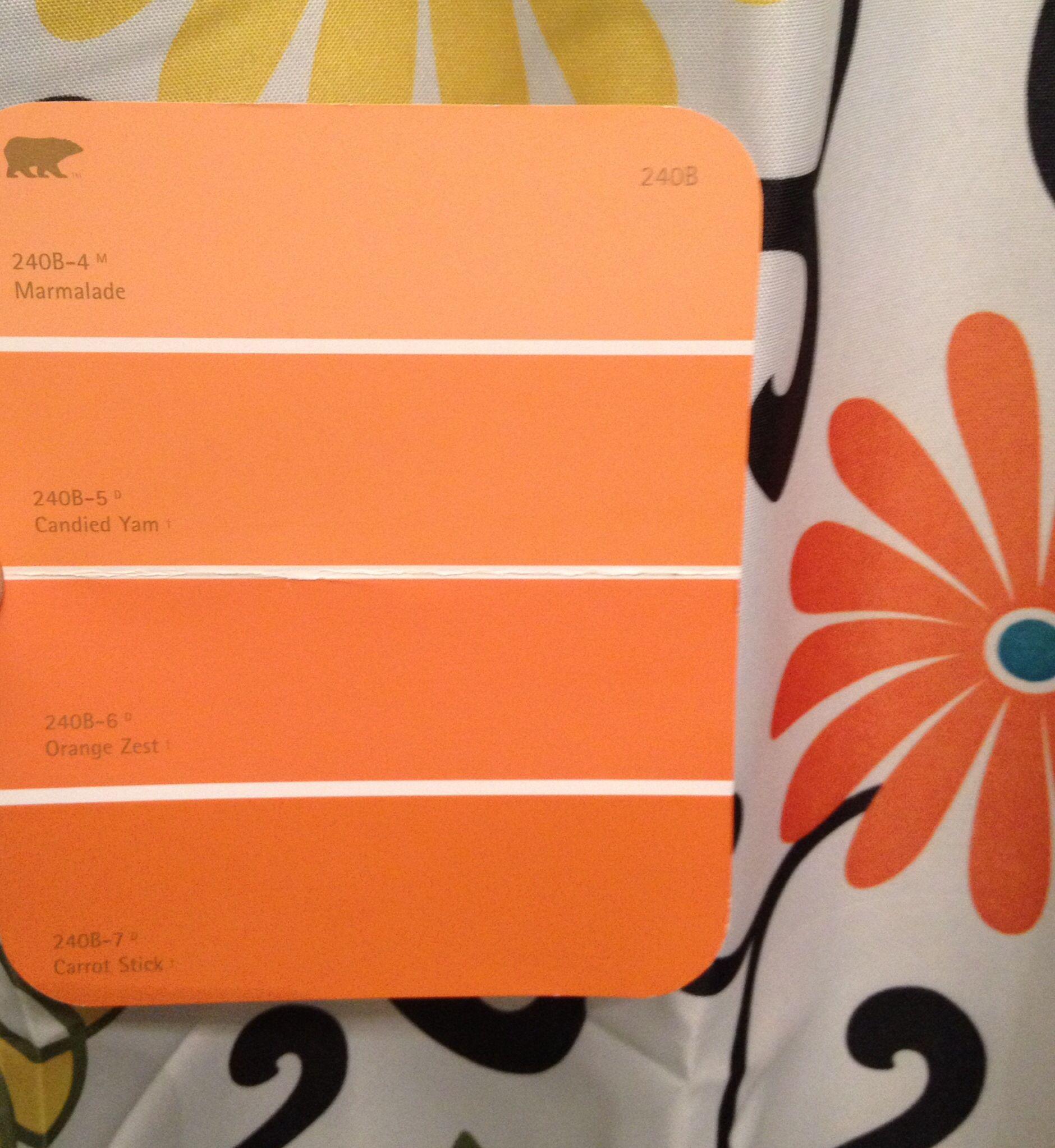 Behr Orange Color Pallet Leaning Toward Carrot Stick Bottom