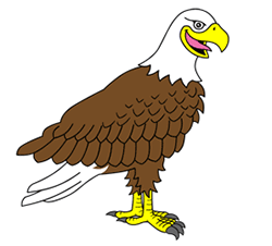 Elegant Eagle Drawing For Kids   Google Search