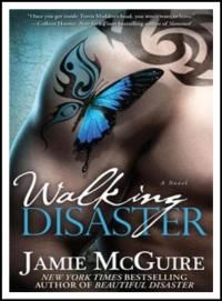 Beautiful Disaster Ebook