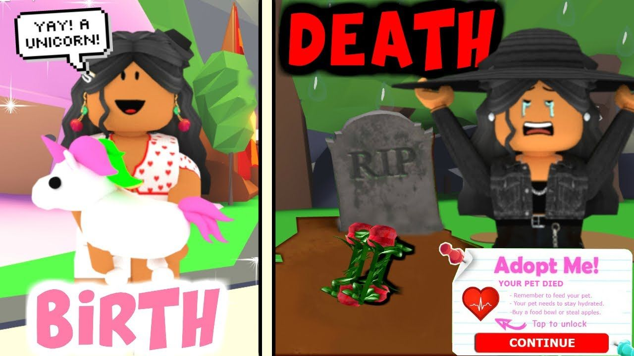If Pets Could Die In Adopt Me Roleplay Sunsetsafari Youtube Adoption Roleplay Pets