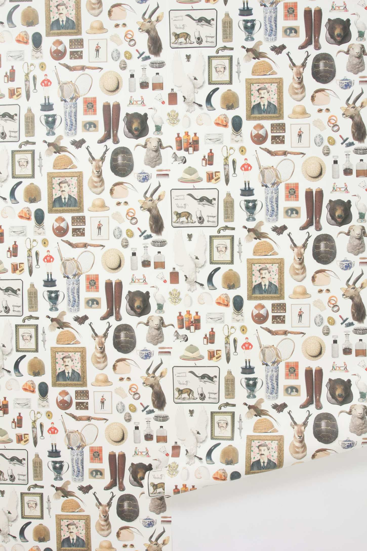 New Antiquitarian Wallpaper Anthropologie.eu Papier