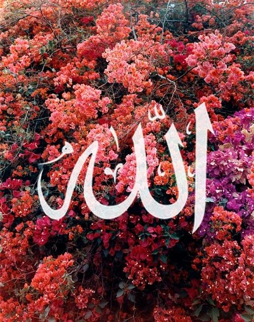 Картинки с надписями аллах испытывает тех кого любит, понедельник выходной