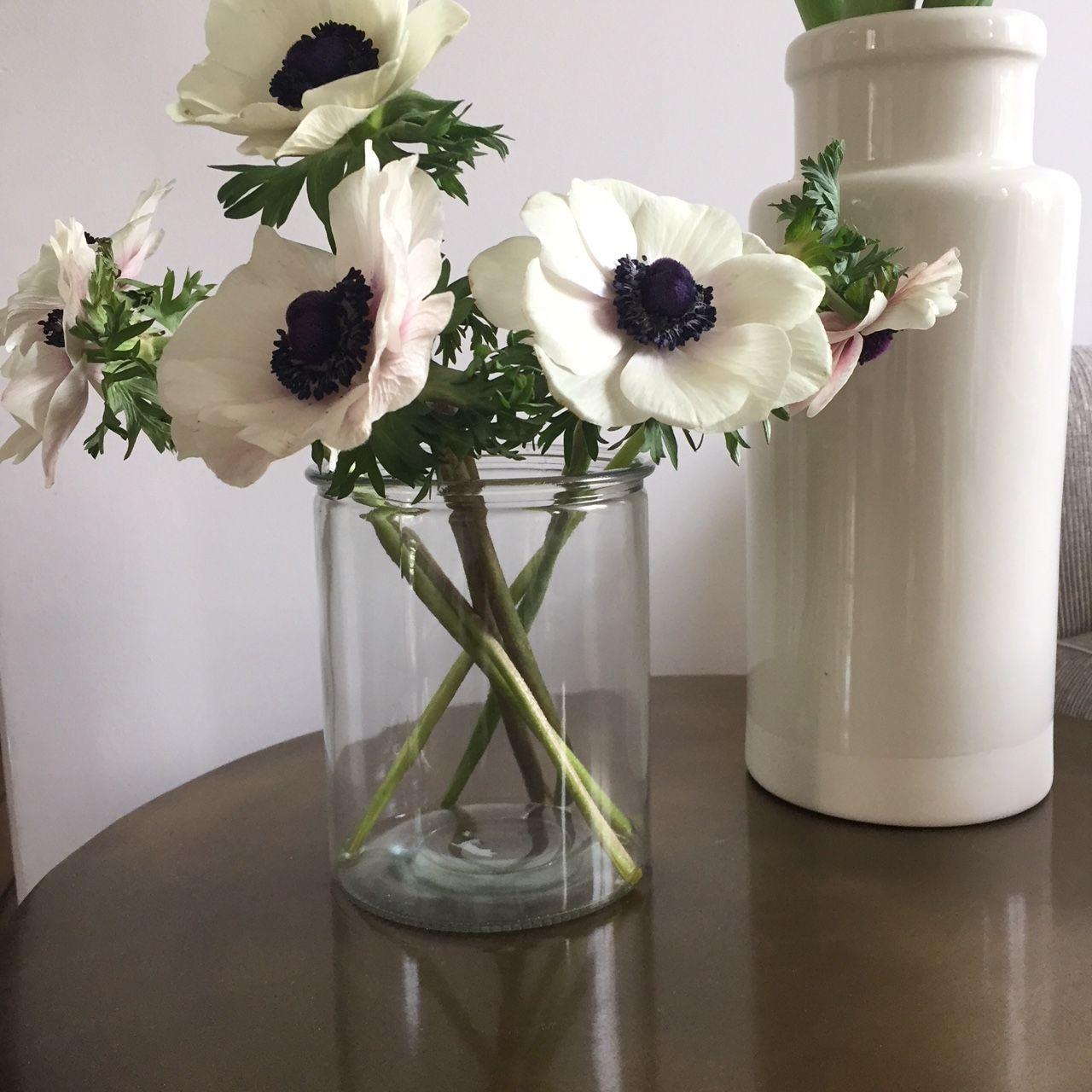 mini prix maxi vase (mit Bildern)