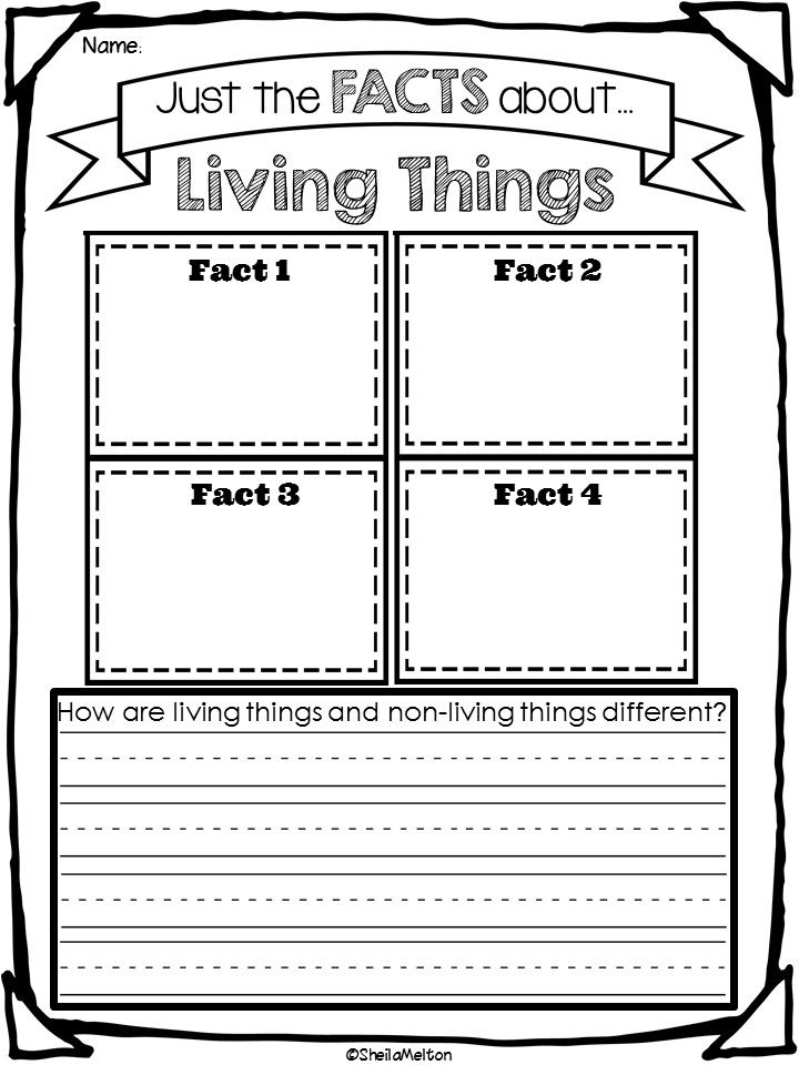 Living And Non Living Things Students Activities And School