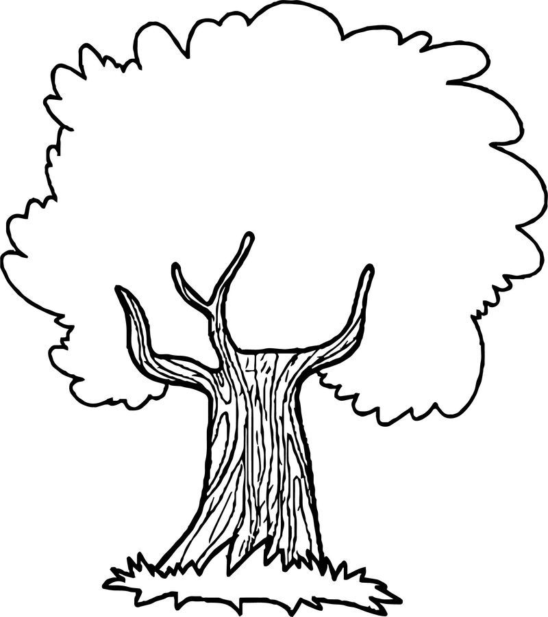 Thoughtful Apple Tree Coloring Page See The Category To Find More