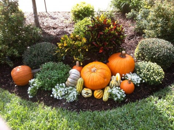fall flower bed ideas google search