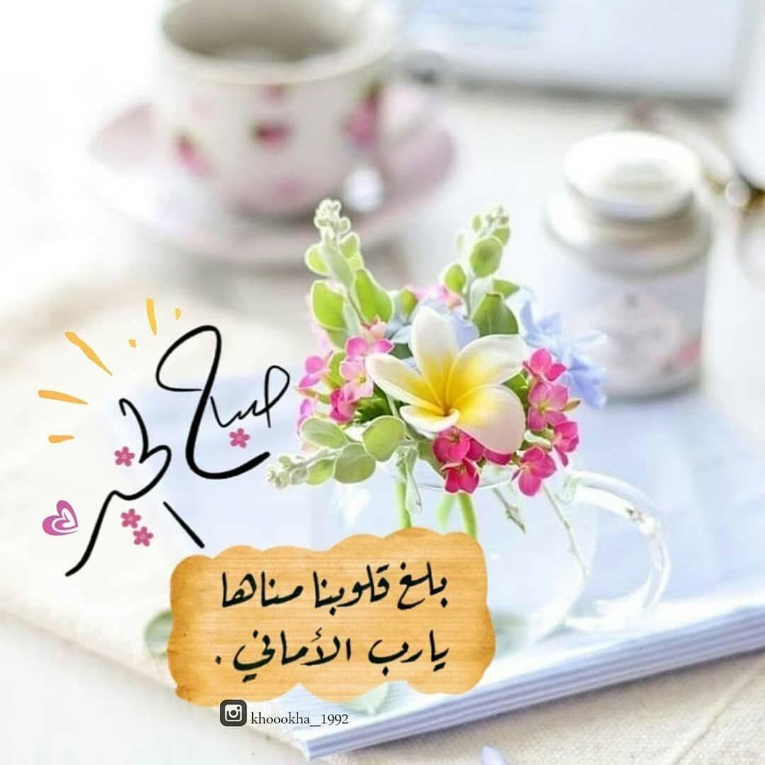 الاسطورة On Instagram الحمدلله الله اكبر لا اله الا الله الا بذكر الله تطم Good Morning Greetings Good Morning Wallpaper Beautiful Morning Messages
