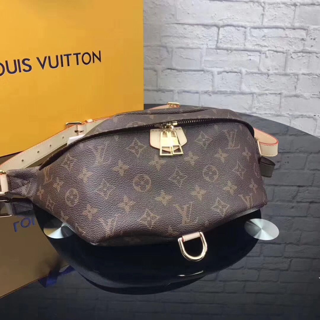 3a9112d83 Louis Vuitton lv unisex woman man waist chest belt bag   Loui BItch ...