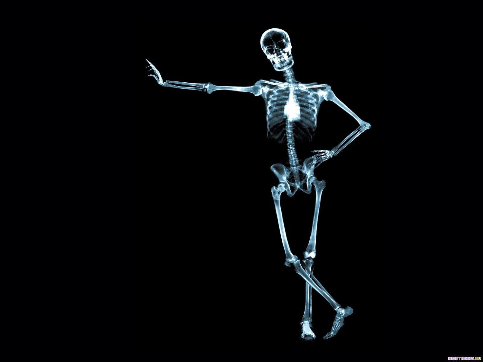 Artistic Anatomy Wallpaper More Information 16801050 Anatomy