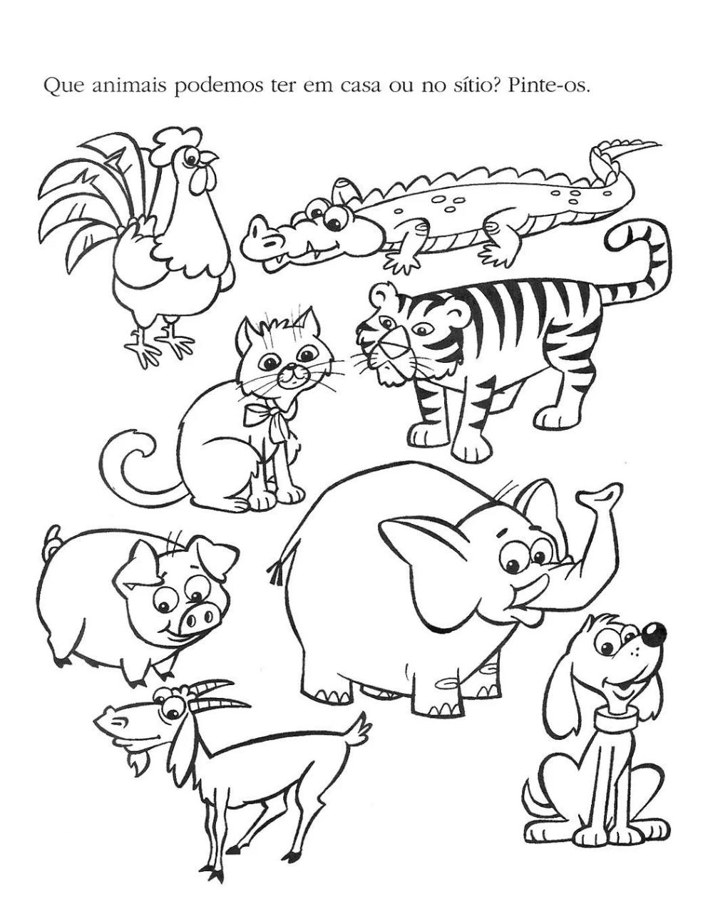 24 Atividades Com Animais Domesticos E Selvagens Para Imprimir