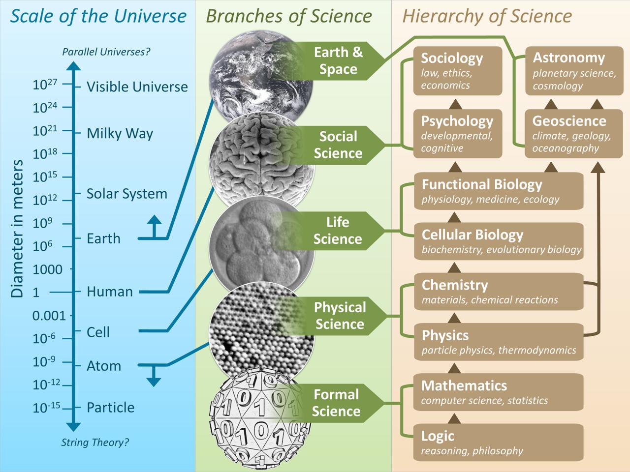 Risultati immagini per branch of science