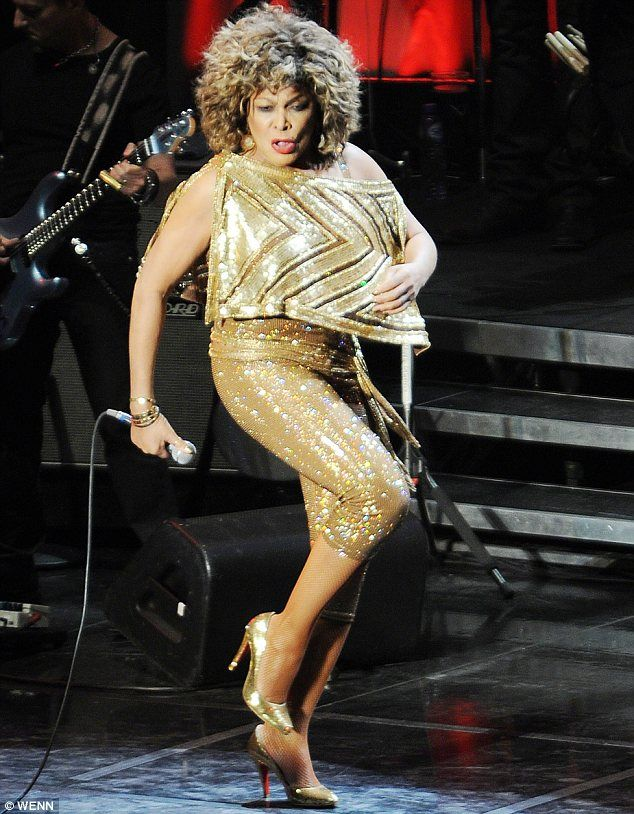 pin by janice abbitt on all about tina tina turner