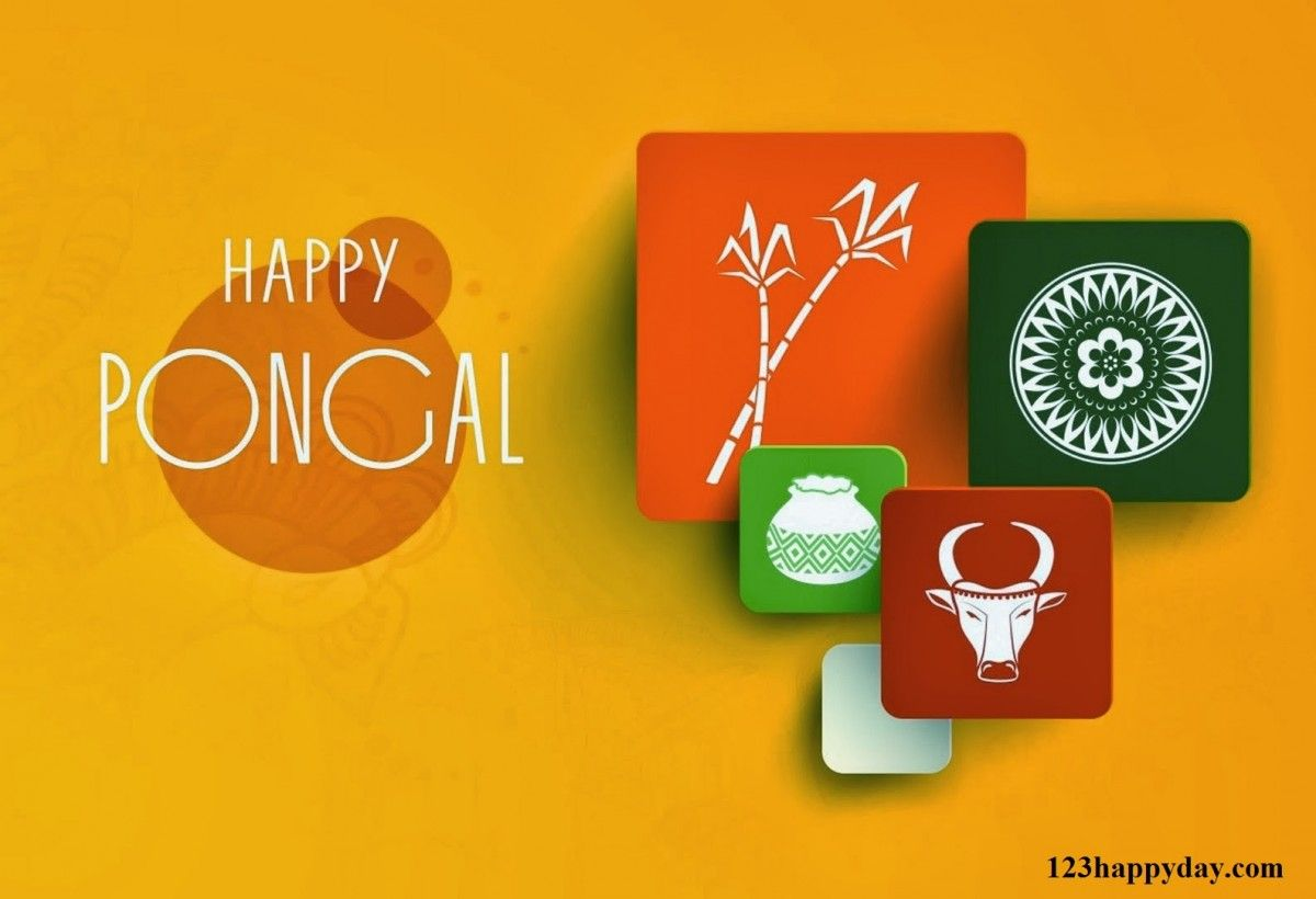 Pongal greetings for friends culture pinterest pongal greetings for friends m4hsunfo