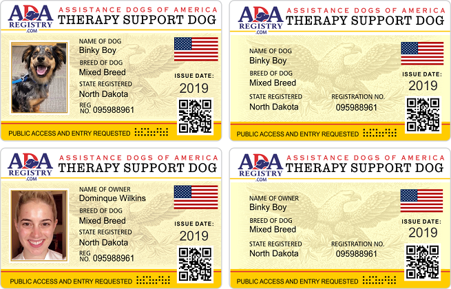 Therapy Gallery Support Dog Service Dog Registration Assistance Dog