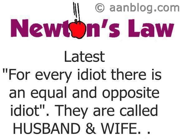 Pin By Niches On Husbandwife Funny Quotes Funny Quotes