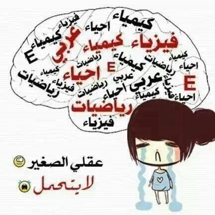 لكل الي عندوا توجيهي Arabic Words Quotes Words