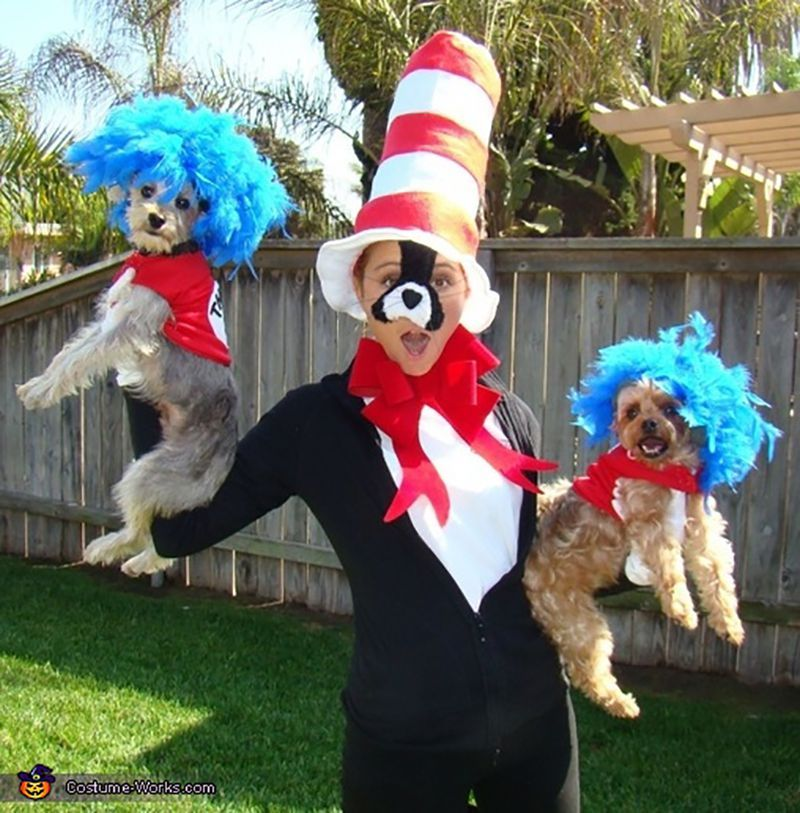 25 Best Dog And Owner Costumes For A More Pup Friendly Halloween