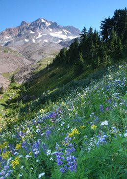 Places to hike and backpack in Oregon