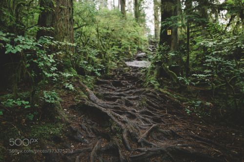 Vancouver by Reillyhunter  canada sunset rainbow vancouver nature bridge falls storm outdoors dam wilderness british columbia p