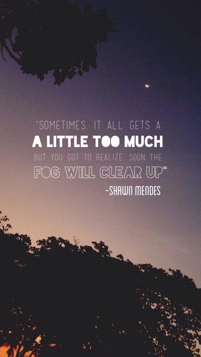 Pinterest: Samiam1112 // A Little Too Much // Shawn Mendes