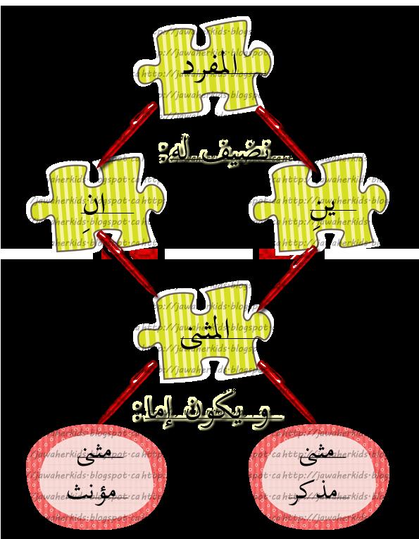 لبيب و لبيبة أوراق عمل لدرس المفرد المثنى و الجمع Arabic Language Learn Arabic Alphabet Arabic Alphabet