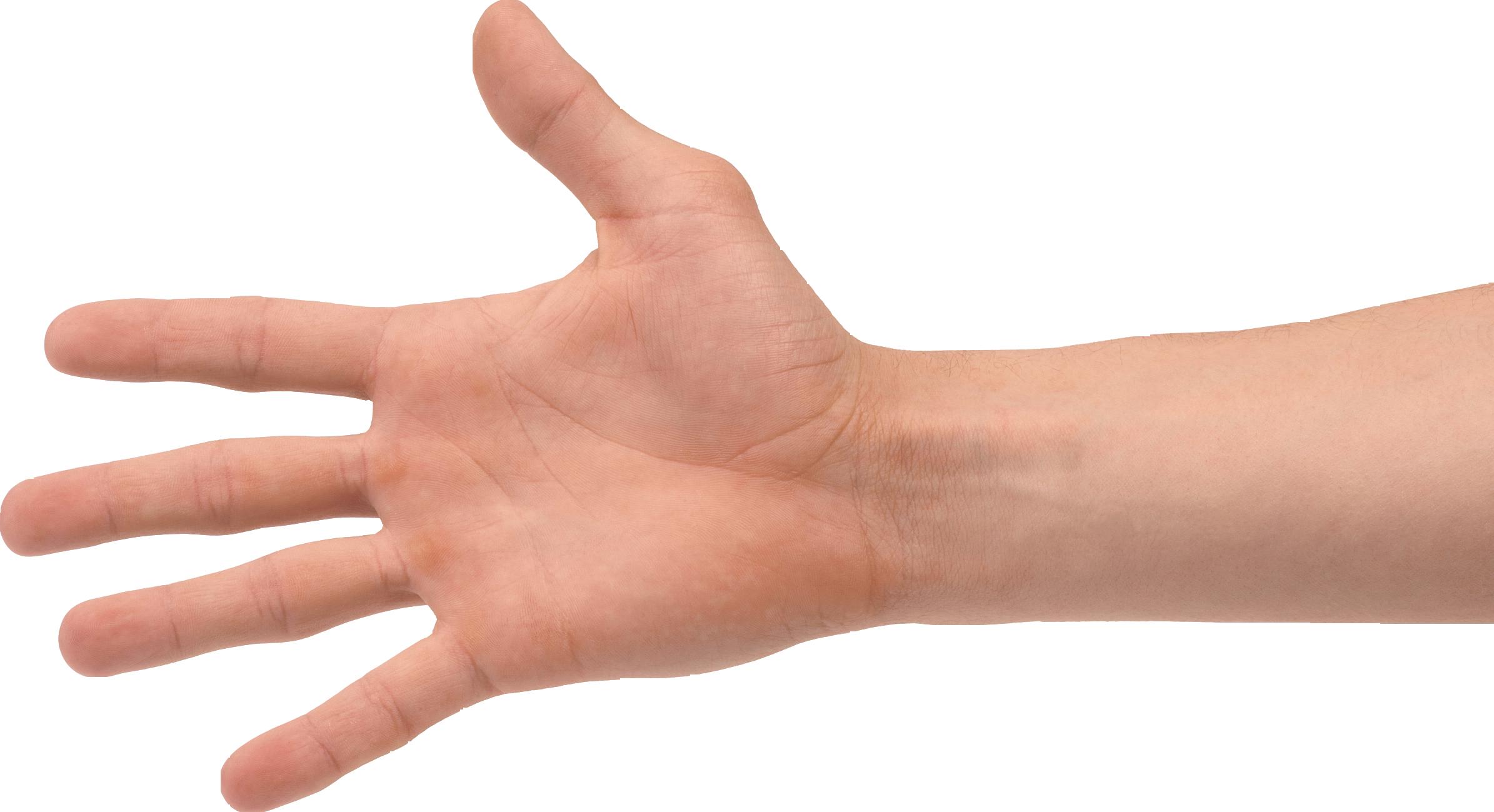 Four Finger Hand Png Image Tattoo Set Finger Hands Finger