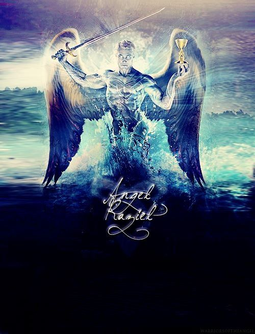 A thousand years ago, the Angel Raziel mixed his blood with the blood of men and created the race of Nephilim. Human- Angel hybrids, they walk among us, unseen but ever present, our invisible protectors. The Shadow- Hunters.