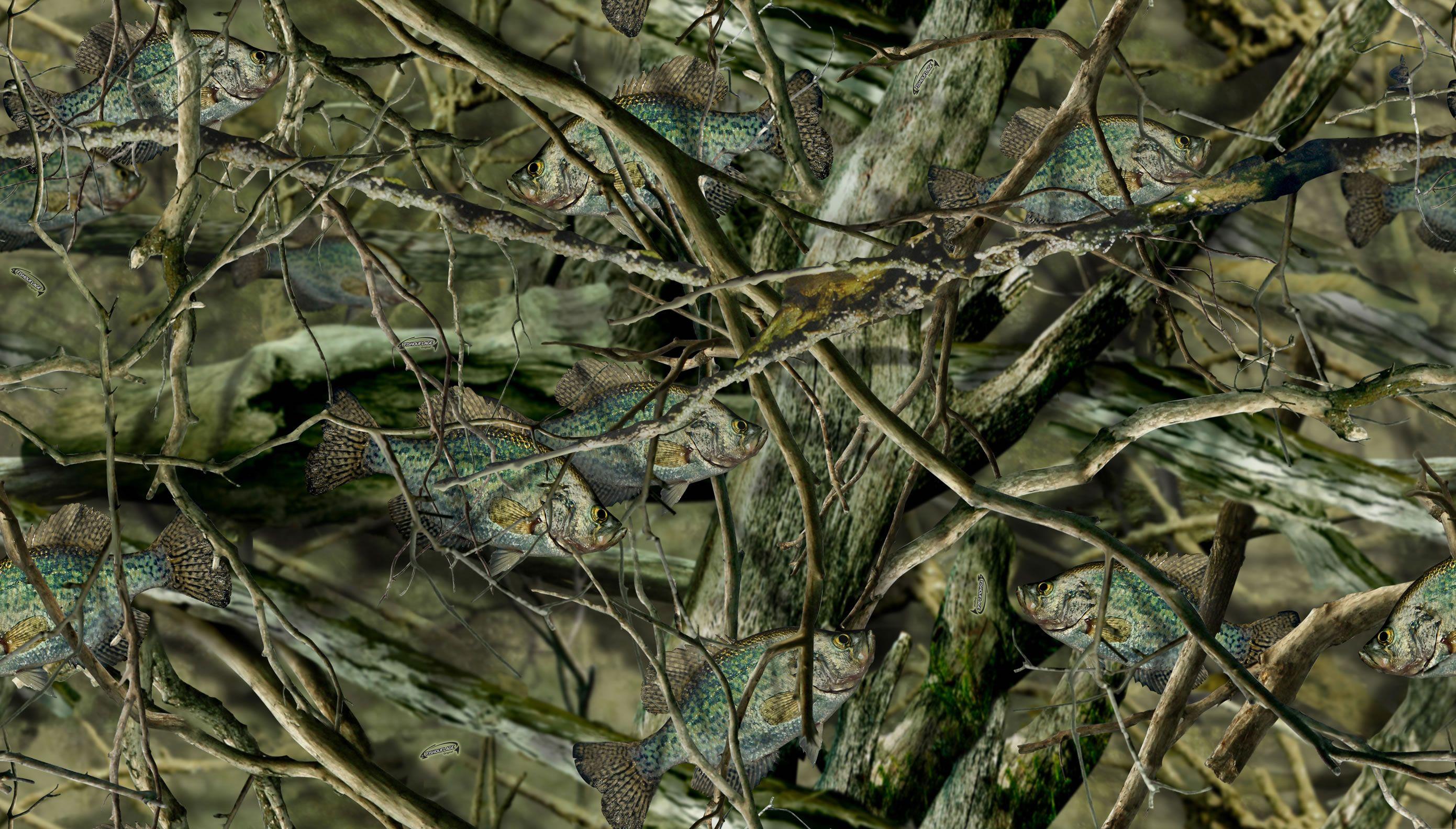 Google Image Result For Http Www Fishouflage Com Uploads