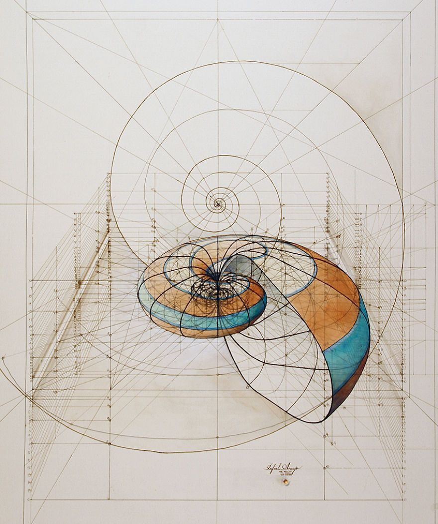 Hand Drawn Coloring Book Reveals Mathematical Beauty Of Nature S Designs With Golden Ratio Illustrations Beautys How To Draw Hands Coloring Books Golden Ratio