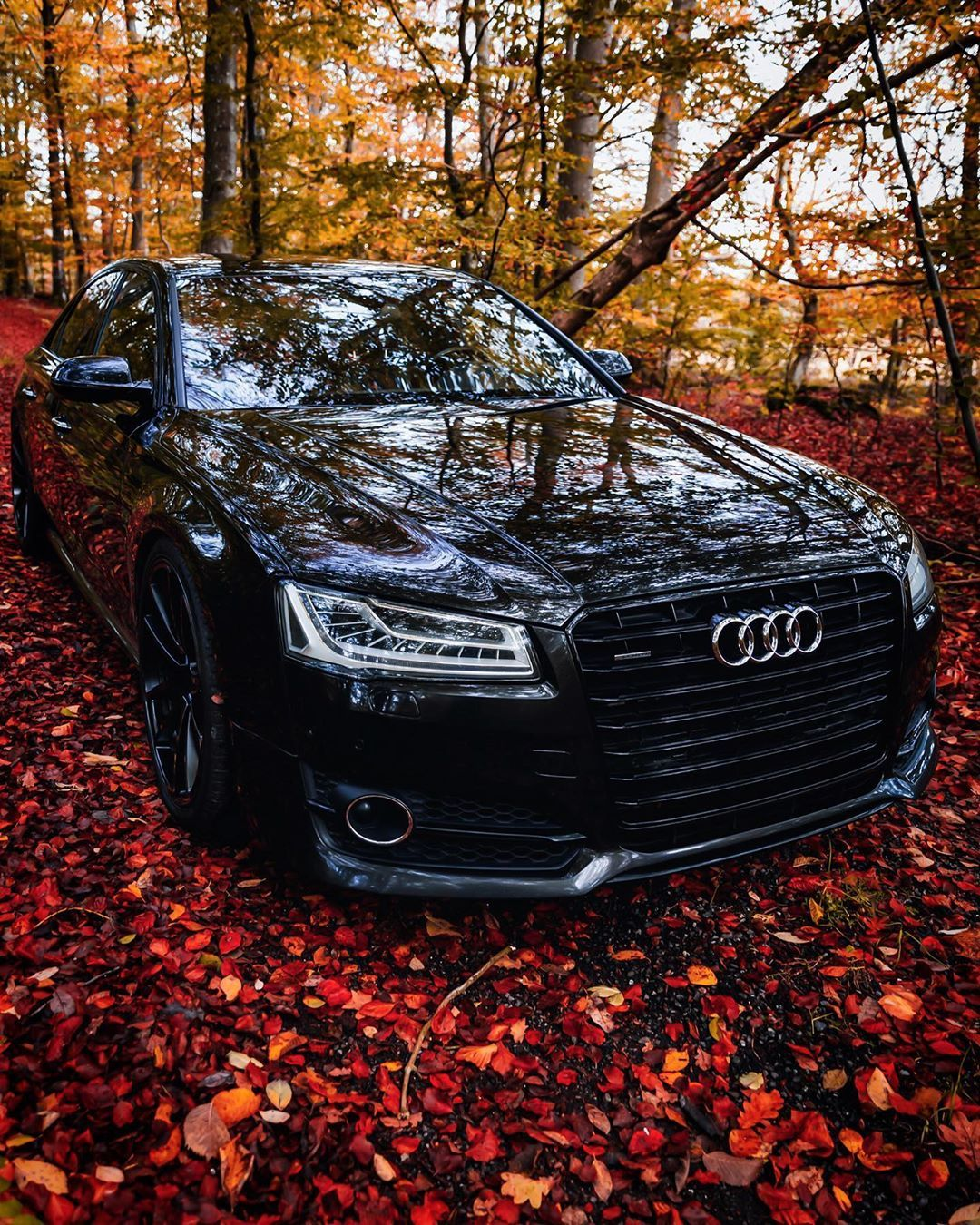 1 121 Likes 17 Comments Audi A8 4h D4 4 2 V8 Bitdi Maskoc On Instagram Thank You So Much For Beautiful Colors They Will Always Make Me Smile Wh