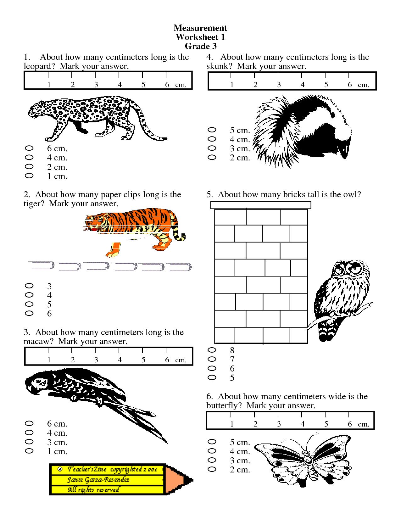 Free 1st Grade Measurement Worksheets Pictures
