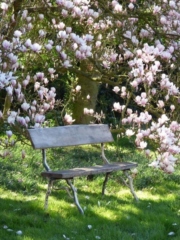 Pingl par catherine iris hermine sur outdoor living - Petit jardin romantique tours ...