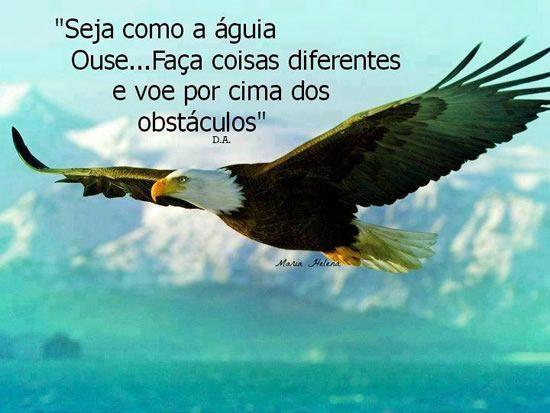 Frases Mensagens Para Facebook Imagem De águia Voando
