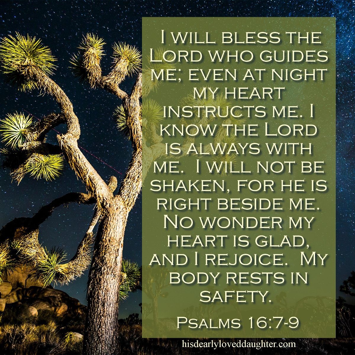 Image result for psalm 16:7-9 image