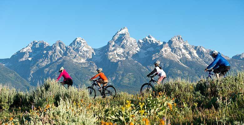 Jackson Hole Mountain Bike Tours, Rentals and Trails